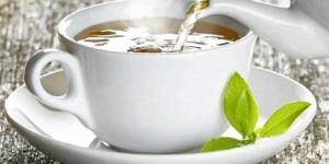 SCN_22-05-2012_LIFE_01_biggest-morning-tea-915174_fct939x578x31_t460